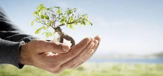 Photo of Ecosostenibilità: di cosa parliamo?