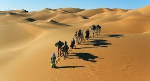 Photo of Il deserto del Sahara tornerà verde come un tempo?