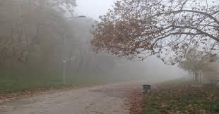 meteo weekend, torna la nebbia al nord