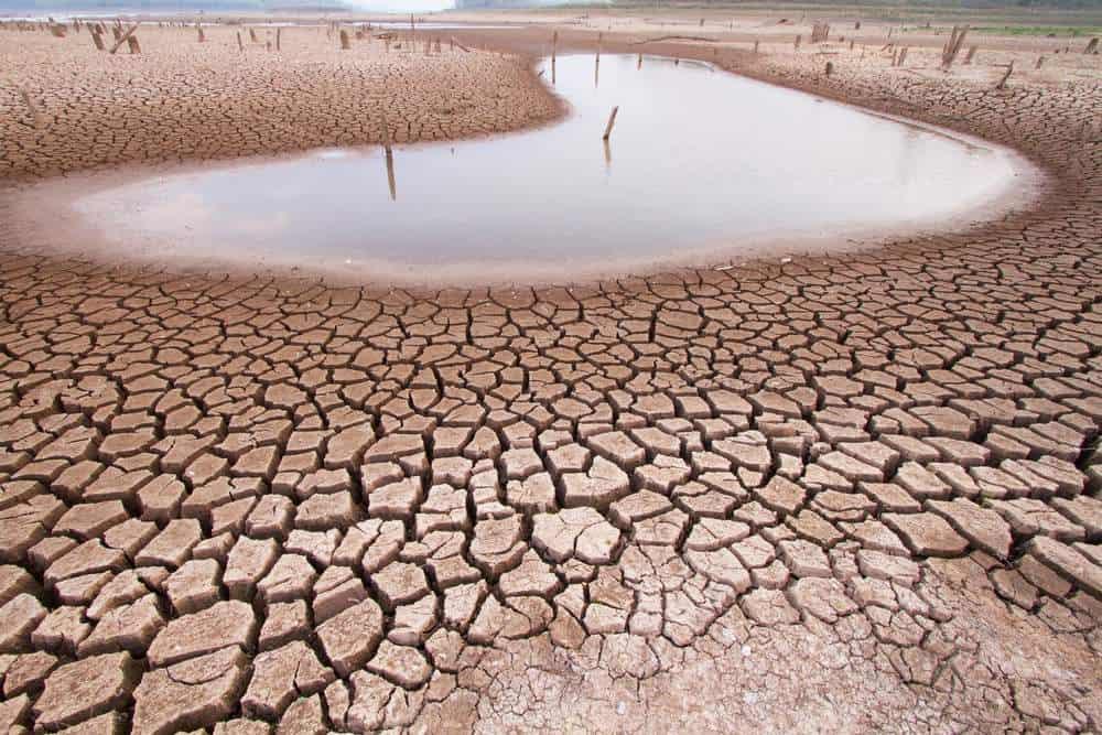 Cambiamenti climatici: verso un clima sempre più siccitoso