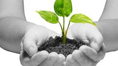 Photo of Le certificazioni ambientali: la svolta europea
