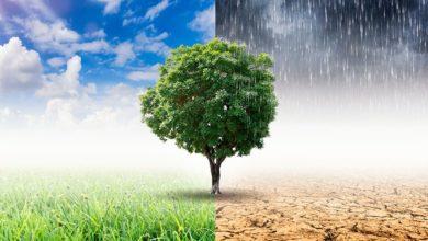 Photo of Il Clima: ha favorito la nascita di molte grandi civiltà ma anche la morte di tante altre.