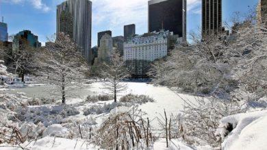 Photo of New York e la tempesta di neve, l'allerta del sindaco