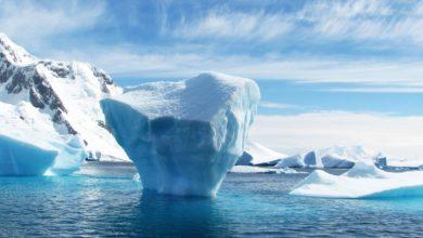 Photo of La Groenlandia sta cambiando, spariranno 200 ghiacciai costieri nei prossimi 20 anni
