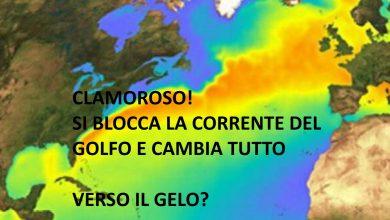 Photo of Riscaldamento globale? E se fosse falso? Corrente del Golfo in BLOCCO