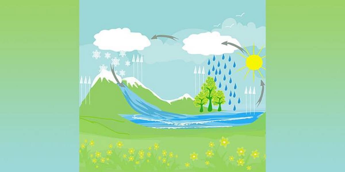 Le fasi del ciclo dell' acqua