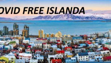 Photo of Islanda primo paese europeo Covid Free: nessun nuovo contagio