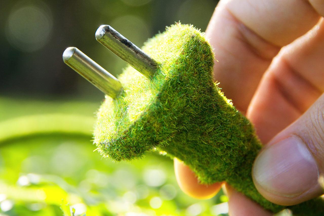 Energia green, quali offerte scegliere