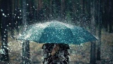 Photo of Meteolive: torna la pioggia. Ecco dove