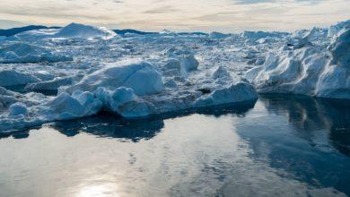 Photo of I ghiacci dell' ARTICO crescono: una buona notizia