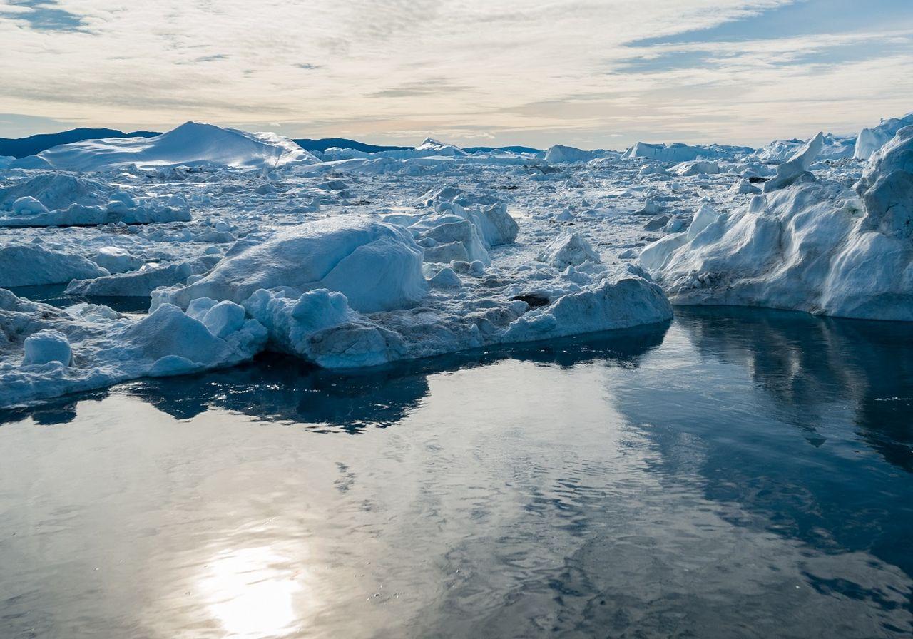 I ghiacci dell' artico