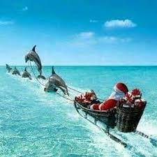 Caldo, estate, mare,... - Babbo Natale e Natale tutto l'anno | Facebook